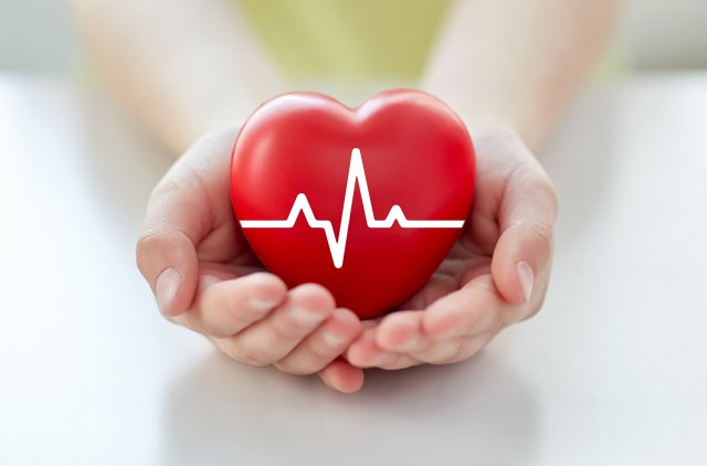 Красное сердце в женских руках