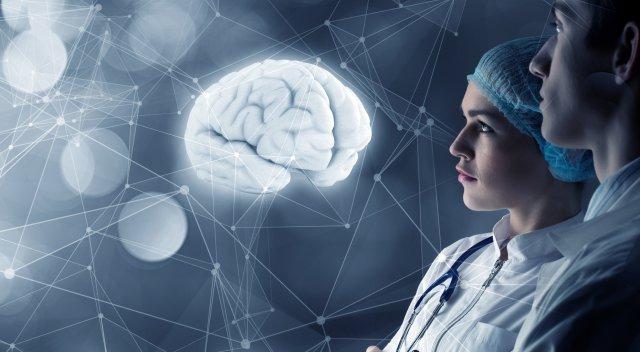 Проекция мозга человека