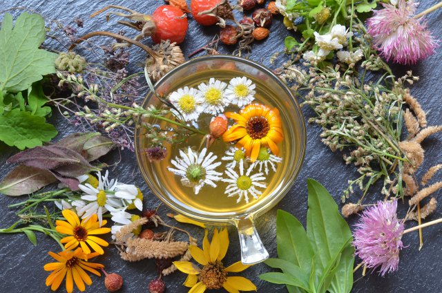 Отвар из трав и цветов